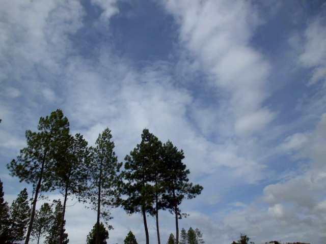 Clouds at Gayo Lues Regency, Nanggroe Aceh Darussalam